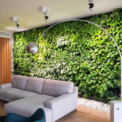 Żywa-zielona-ściana-w-apartamencie-2.jpg
