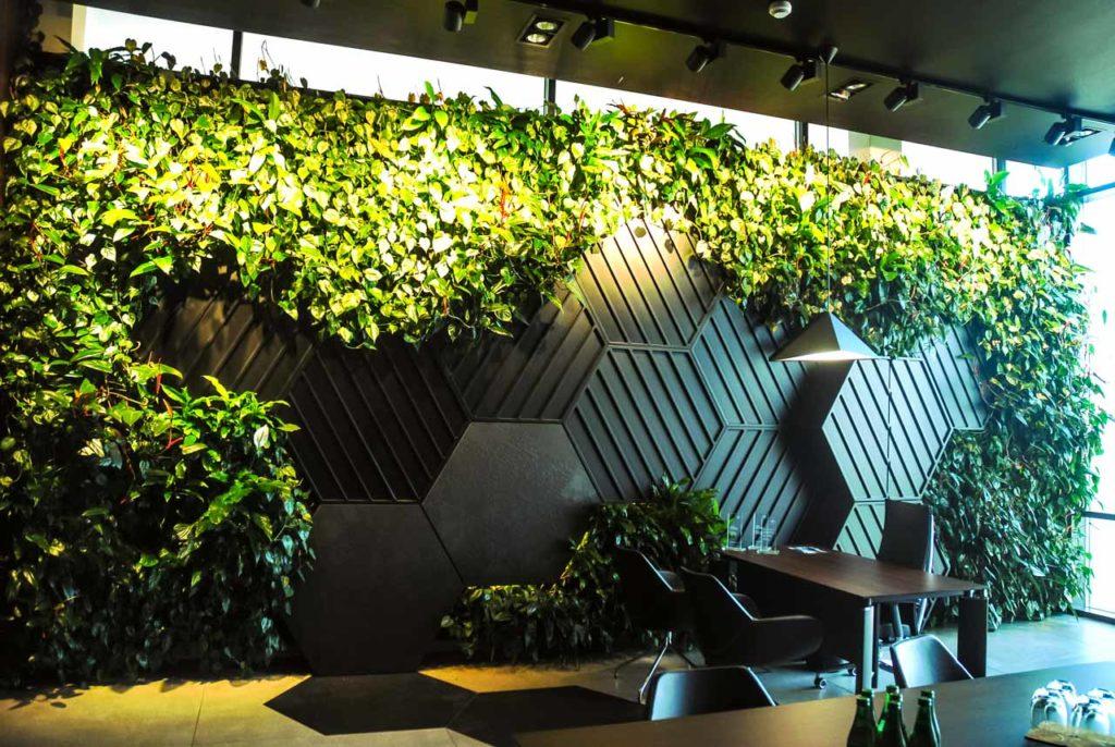 Żywa zielona ściana (ogród wertykalny) w salonie BMW w Bydgoszczy