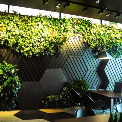 Żywa-zielona-ściana-w-salonie-BMW-w-Bydgoszczy-2.jpg