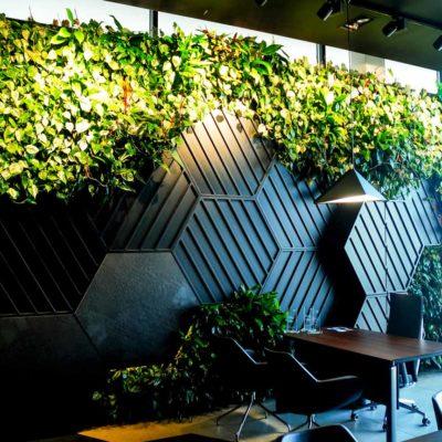 Żywa-zielona-ściana-w-salonie-BMW-w-Bydgoszczy-3.jpg