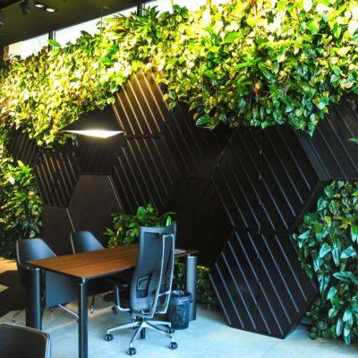 Żywa-zielona-ściana-w-salonie-BMW-w-Bydgoszczy.jpg