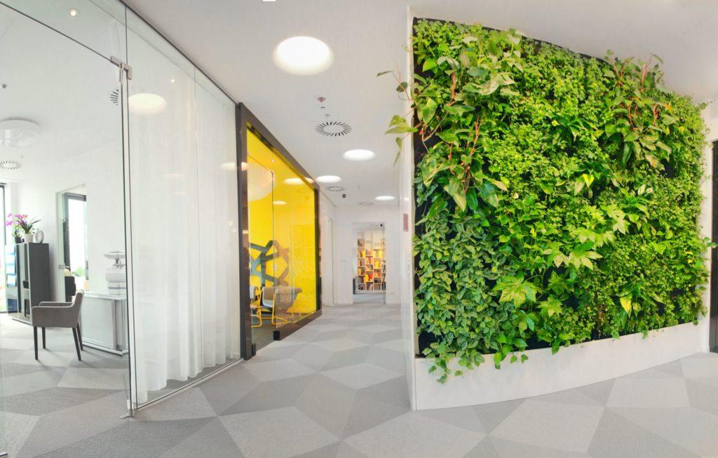 ARS Retail zielona ściana ogród wertykalny