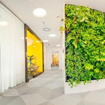 Biuro-ARS-Retail-zielona-ściana-ogród-wertykalny.jpg