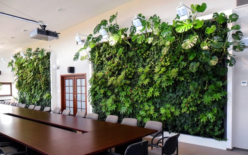 Zielona ściana - ogród wertykalny w biurze Carpol