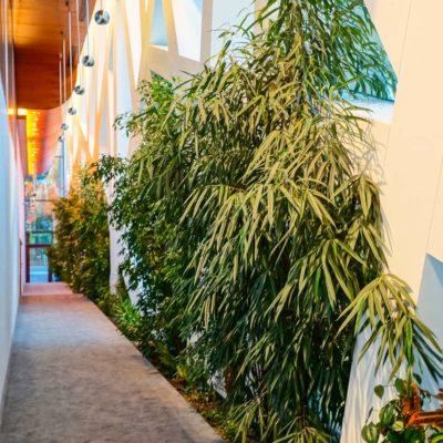 Hotel-Narvil-Serock-zielone-wnętrza-1.jpg
