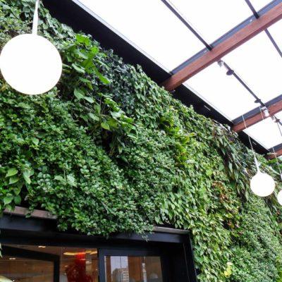 Ogród-zimowy-Galeria-Mokotów-zielona-ściana-10.jpg