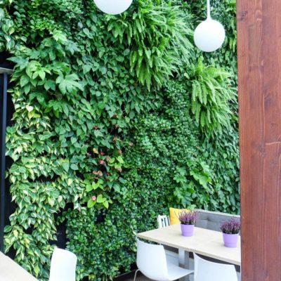 Ogród-zimowy-Galeria-Mokotów-zielona-ściana-2.jpg