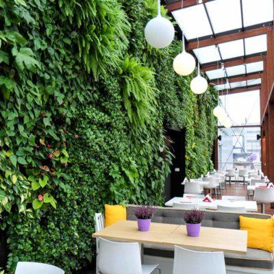 Ogród-zimowy-Galeria-Mokotów-zielona-ściana-4.jpg