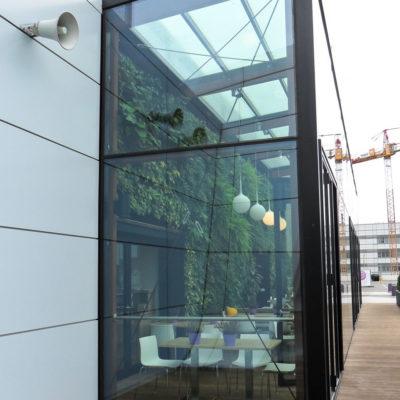 Ogród-zimowy-Galeria-Mokotów-zielona-ściana.jpg