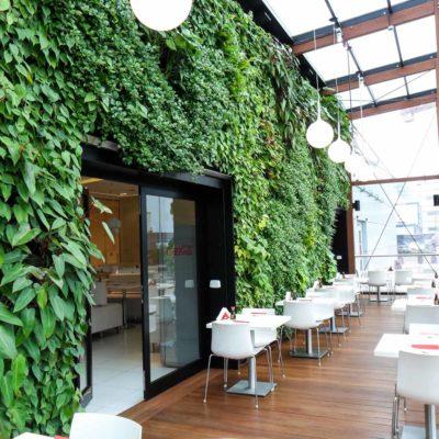 Ogród-zimowy-Galeria-Mokotów-zielona-ściana-5.jpg