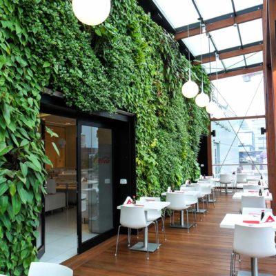 Ogród-zimowy-Galeria-Mokotów-zielona-ściana-6.jpg