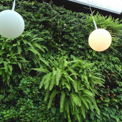 Ogród-zimowy-Galeria-Mokotów-zielona-ściana-8.jpg