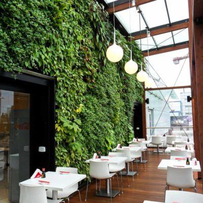 Ogród-zimowy-Galeria-Mokotów-zielona-ściana-9.jpg