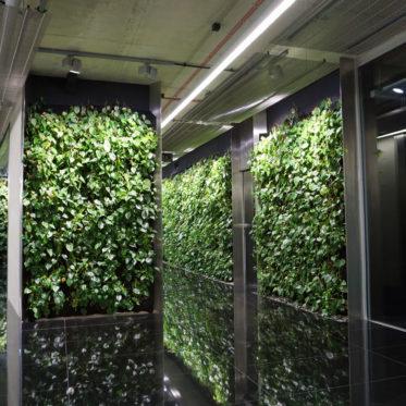 Szucha Premium Offices