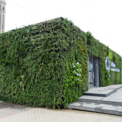 USP-zdrowie-mobilna-zielona-ściana-ogród-wertykalny-4.jpg