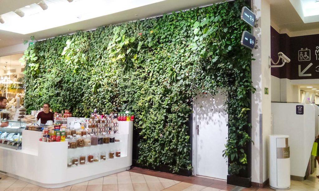 Zielona ściana przy stoisku w Galerii Mokotów