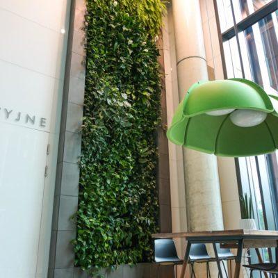 Zielona-ściana-w-Centrum-Konferencyjnym-Nimbus-w-Warszawie-2.jpg