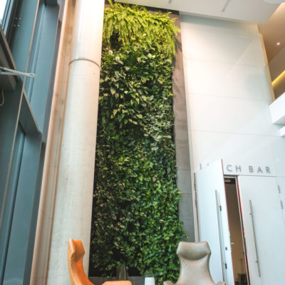 Zielona-ściana-w-Centrum-Konferencyjnym-Nimbus-w-Warszawie-4.jpg