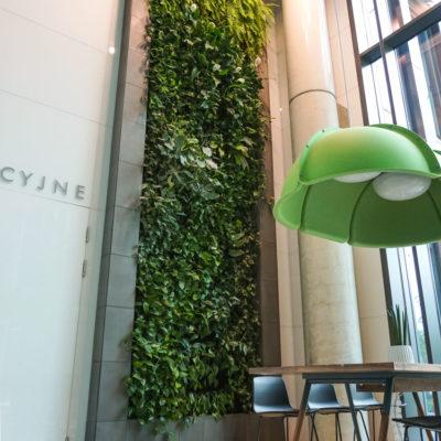 Zielona-ściana-w-Centrum-Konferencyjnym-Nimbus-w-Warszawie.jpg