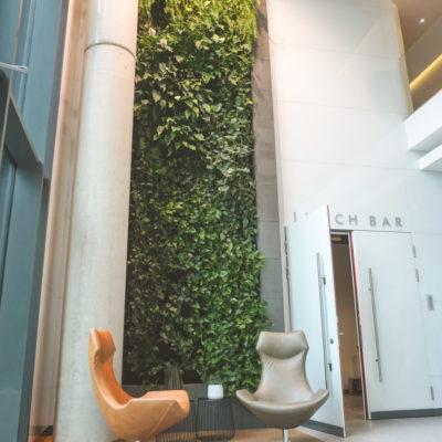 Zielona-ściana-w-Centrum-Konferencyjnym-Nimbus-w-Warszawie-5.jpg