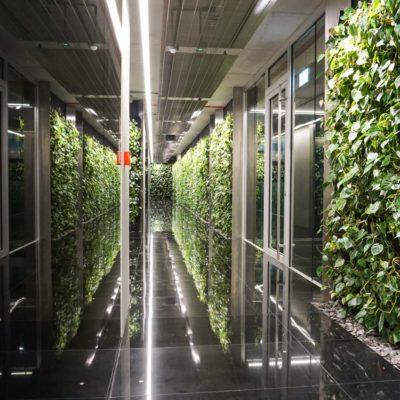 Zielona-ściana-w-Szucha-Premium-Offices-3.jpg