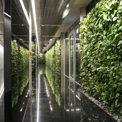 Zielona-ściana-w-Szucha-Premium-Offices-4.jpg