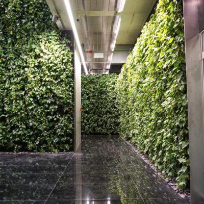 Zielona-ściana-w-Szucha-Premium-Offices.jpg