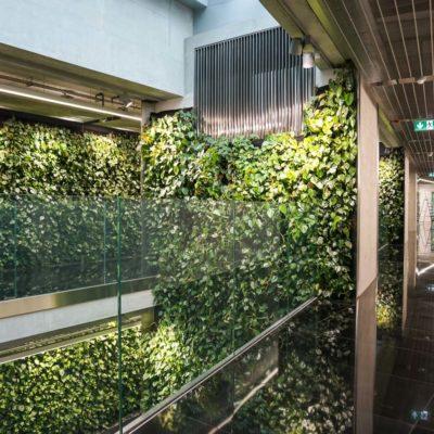Zielona-ściana-w-Szucha-Premium-Offices-6.jpg