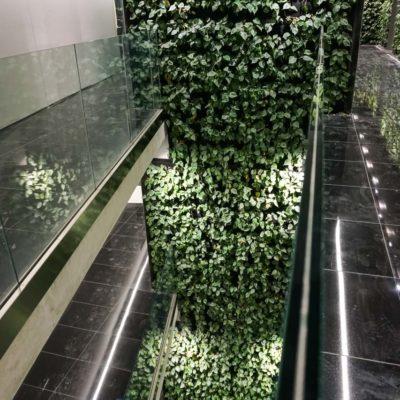 Zielona-ściana-w-Szucha-Premium-Offices-7.jpg