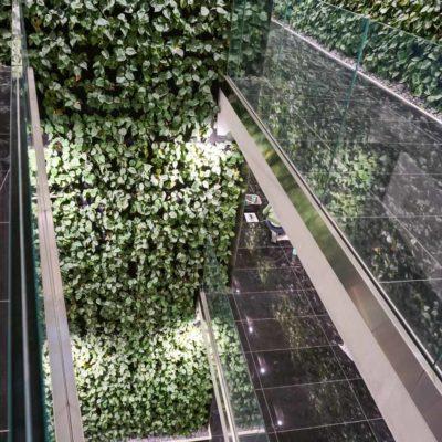 Zielona-ściana-w-Szucha-Premium-Offices-8.jpg