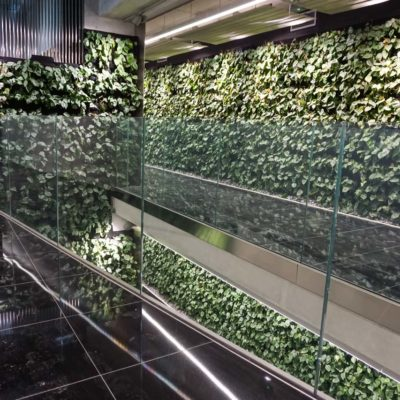 Zielona-ściana-w-Szucha-Premium-Offices-9.jpg