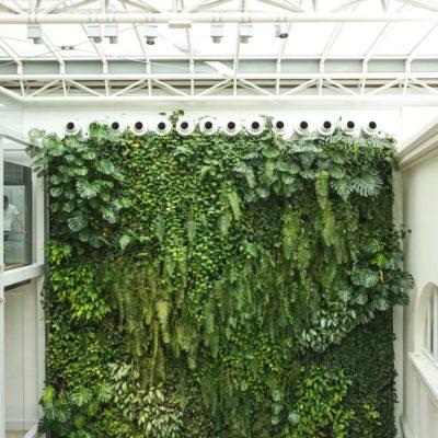 Zielona-ściana-w-bibliotece-na-koszykowej-w-Warszawie-3.jpg