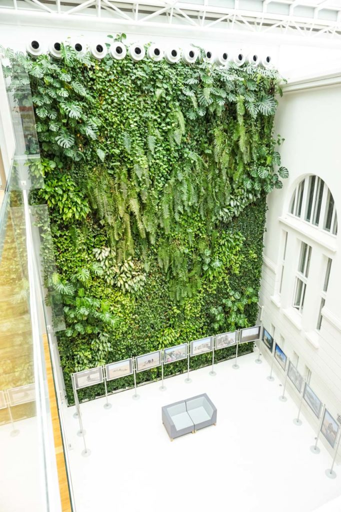 Zielona ściana w bibliotece na ul. Koszykowej w Warszawie