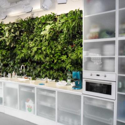 Zielona-ściana-w-biurze-BauschLomb-2.jpg