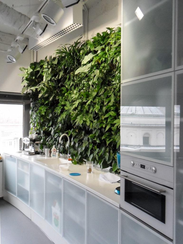 Żywa zielona ściana - ogród wertykalny w biurze Bausch&Lomb