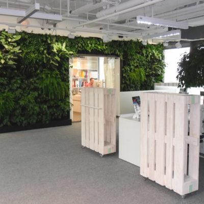 Zielona-ściana-w-biurze-BauschLomb.jpg