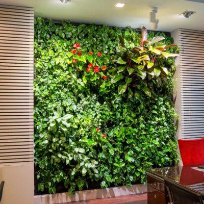 Zielona-ściana-w-biurze-Red-Bull-4.jpg