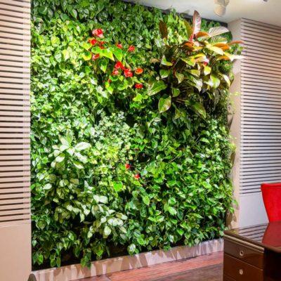 Zielona-ściana-w-biurze-Red-Bull.jpg