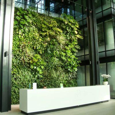 Zielona-ściana-w-recepcji-biura-Eurocentrum.jpg
