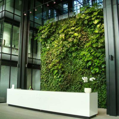 Zielona-ściana-w-recepcji-biura-Eurocentrum-6.jpg