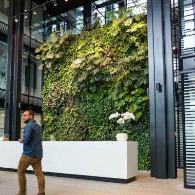 Zielona-ściana-w-recepcji-biurowca-Eurocentrum-8.jpg