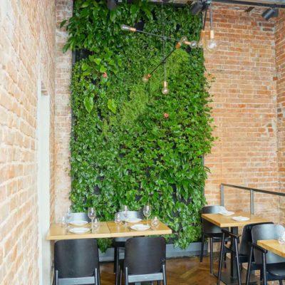 Zielona-ściana-w-restauracji.jpg