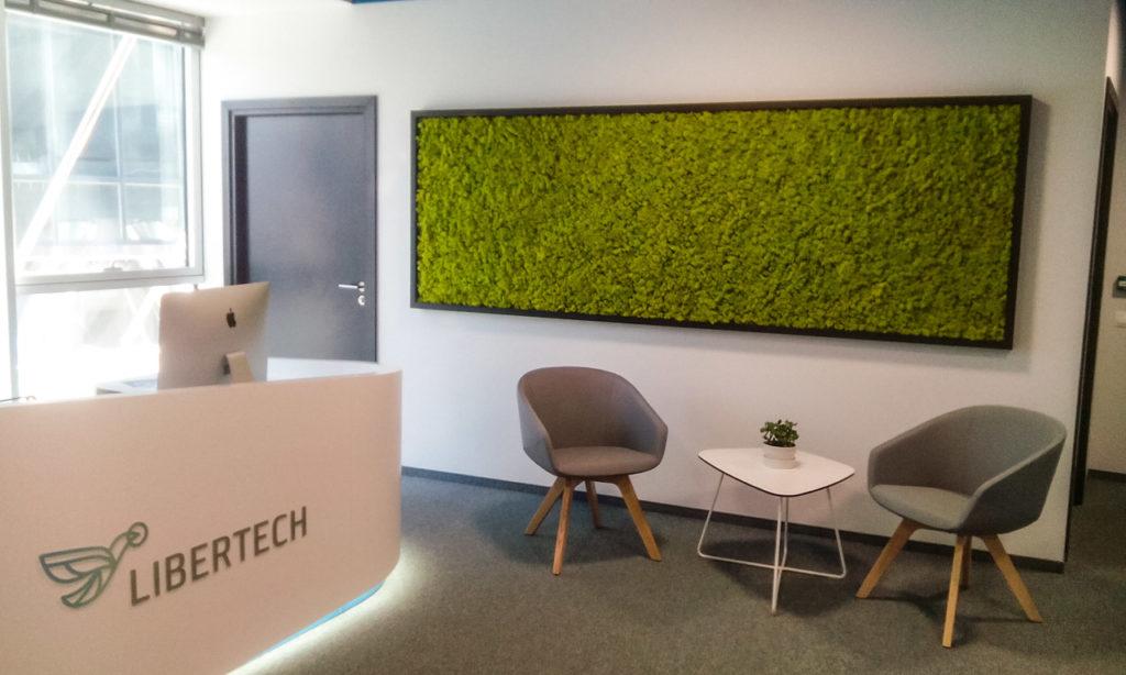 Zielona ściana z chrobotka w biurze Libertech