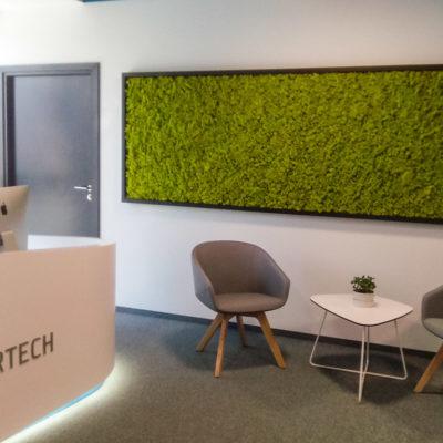 Zielona-ściana-z-chrobotka-w-biurze-Libertech-3.jpg