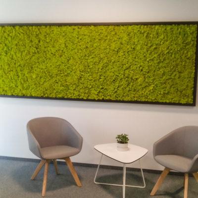 Zielona-ściana-z-chrobotka-w-biurze-Libertech.jpg