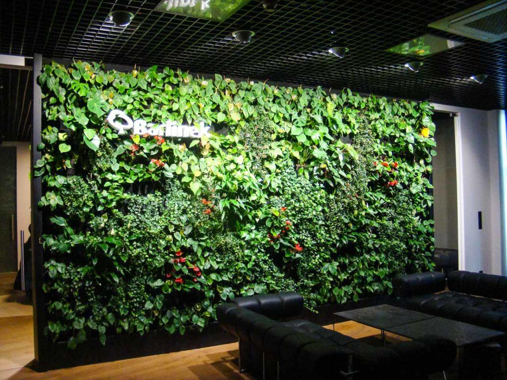 Zielona ściana w biurze firmy Barlinek