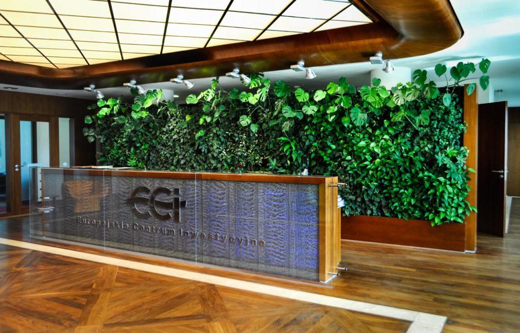 Żywa zielona ściana w recepcji biura Europejskiego Centrum Inwestycyjnego