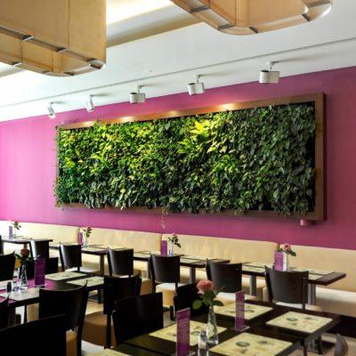Zielona-sciana-w-restauracji-1.jpg