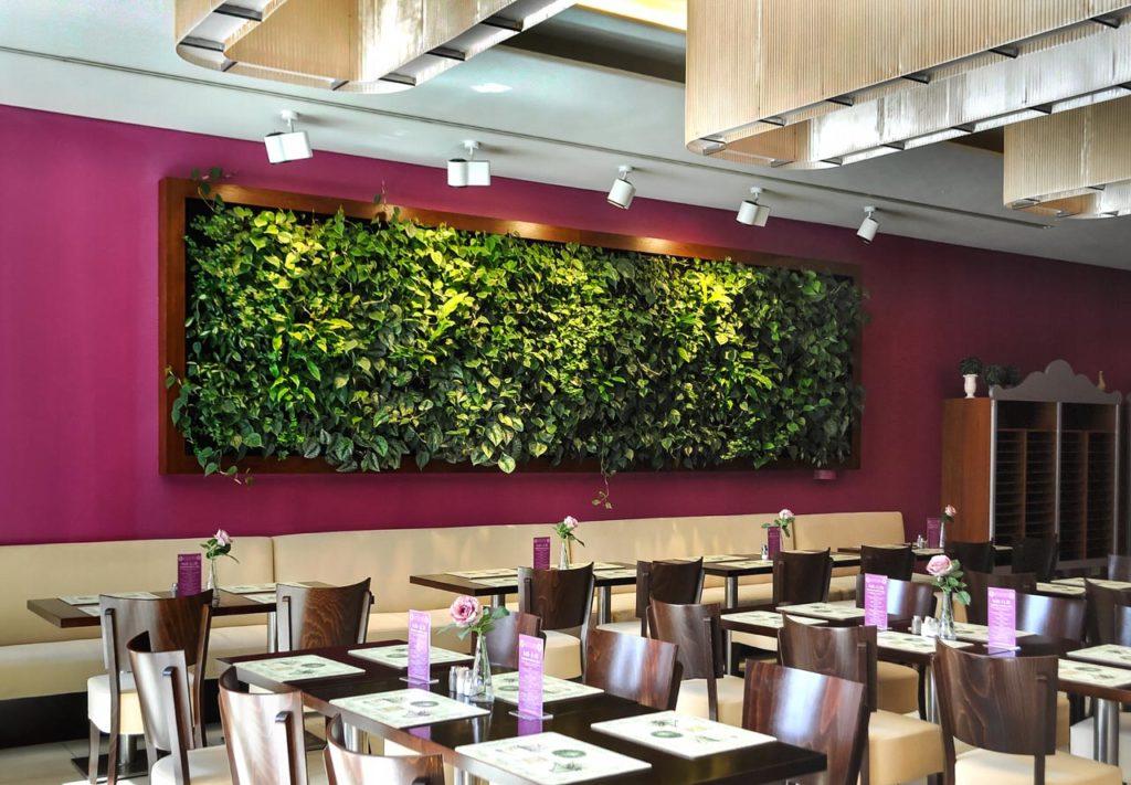 Zielona ściana (ogród wertykalny) w restauracji - Warszawa