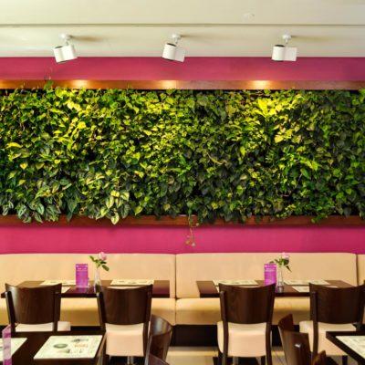 Zielona-sciana-w-restauracji-3.jpg